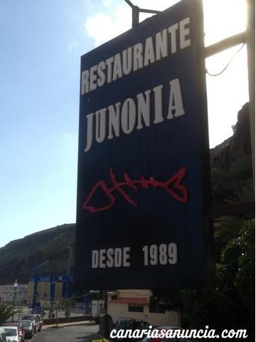 Junonia - 596.jpg
