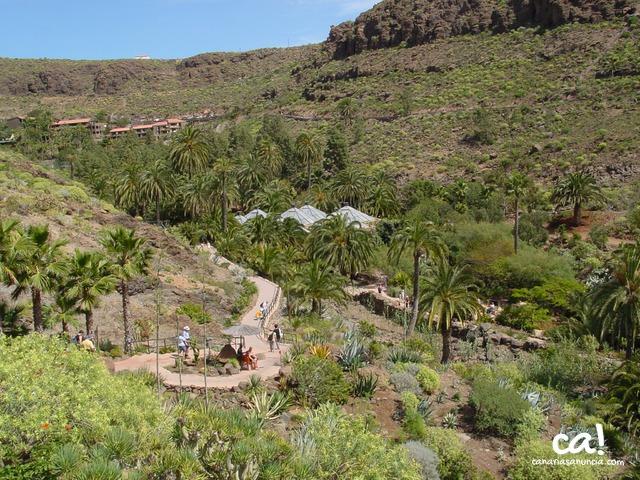 Palmitos Park - 87.jpg