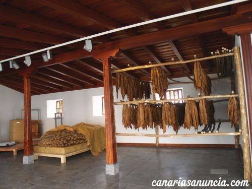 Museo del Puro y de la Fiesta de Las Cruces - 2_1