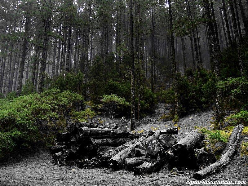 Paisaje protegido de Las Lagunetas - 800px-las_lagunetas