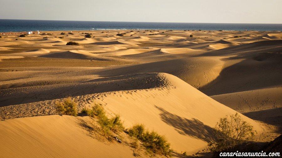 Dunas de Maspalomas - Dunas de Maspalomas, Gran Canaria